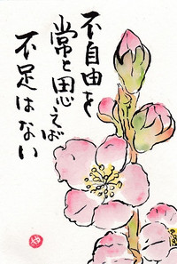 Img_20160114_0001